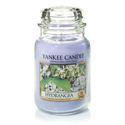 Hydrangea nagy üveggyertya