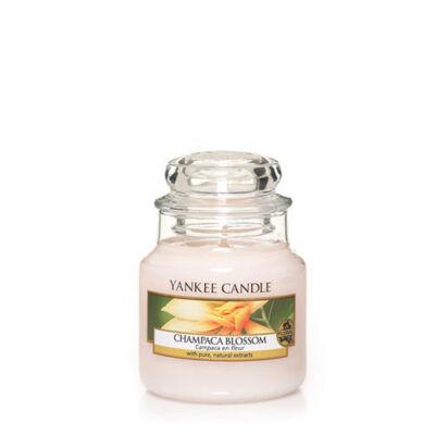 Champaca Blossom kis üveggyertya