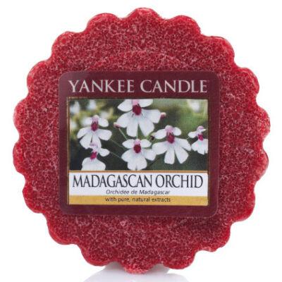 Madagascan Orchid Tarts® mini viasz