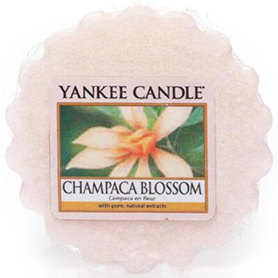 Champaca Blossom Tarts® mini viasz
