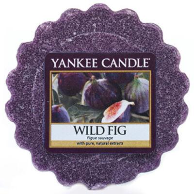 Wild Fig Tarts® mini viasz